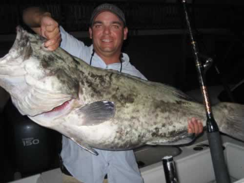 p_Holden_Beach_Fishing_Gag_Grouper_3.jpg