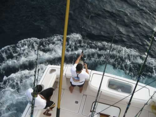 p_Holden_Beach_Fishing_Offshore_3.jpg