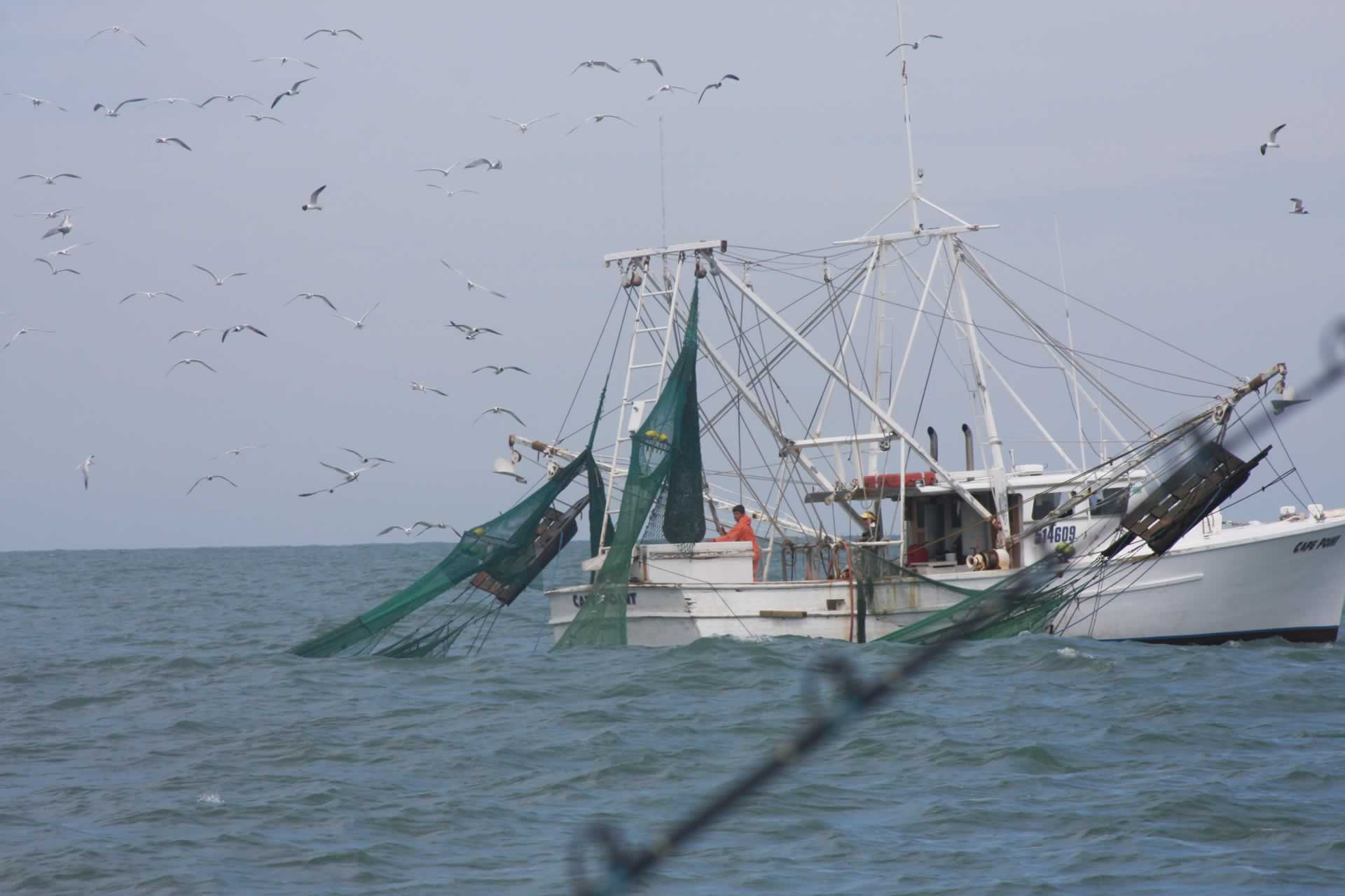 p_Holden_Beach_Fishing_Shrimpers_2.jpg